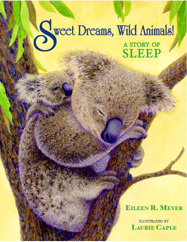 Sweet Dreams Front Cover