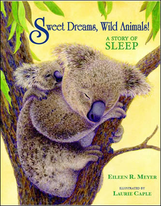 Sweet Dreams, Wild Animals! by author Eileen Meyer
